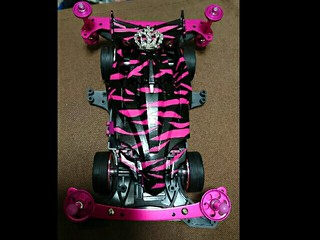 Pink Zebra msk