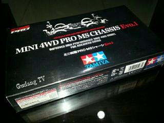 Mini 4WD PRO MS Evo.1