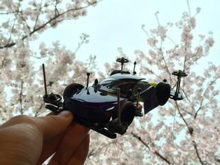 桜とミニ四駆