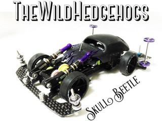 【NoWildFes】ASTRALSkull Beetle