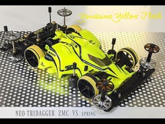 MEO-TRIDAGGER  ZMC  VS spring
