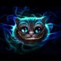 CHESHIRE猫