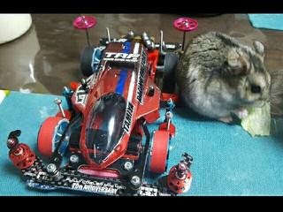 4D-Racing No4 ママ山椒VS♪