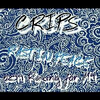 CRIPSレーシング