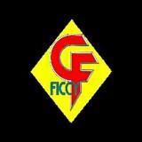 国際サイバーフォーミュラ連盟 F.I.C.C.Y