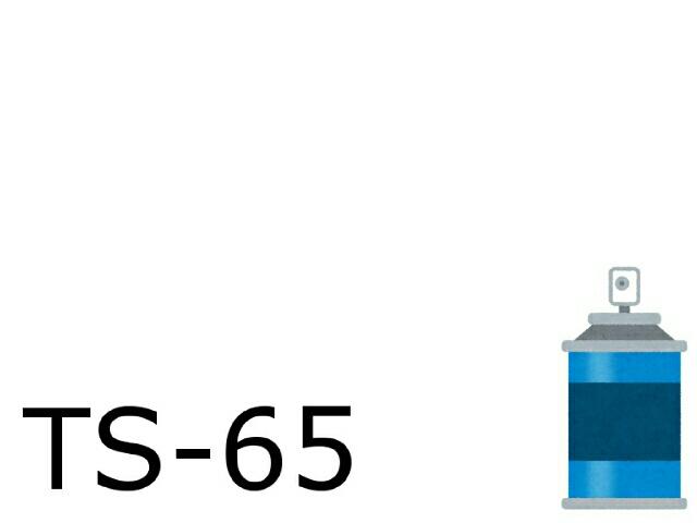 TS-65 パールクリヤー