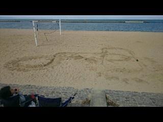 砂浜でワイルドだろ~🎵