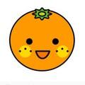 Orange  父