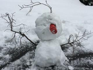 雪ダルマンmk.2