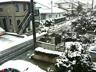 20170209 ❄雪!!