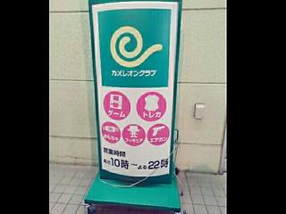 綾瀬カメレオンクラブ