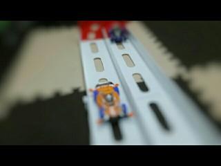 アニマルホームレース