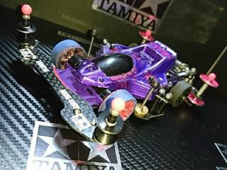 サンショ 紫