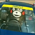 ENDLESSくま