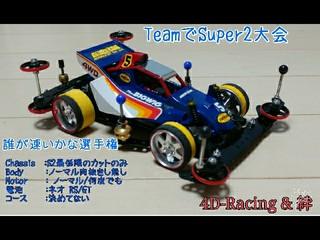 4D-Racing S2カップ用BIGWIG