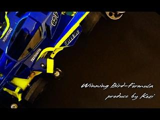 Winning Bird-Formula