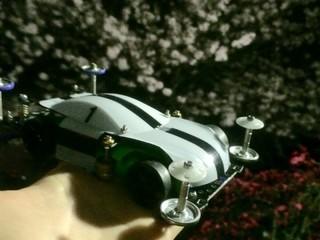 桜とTRF