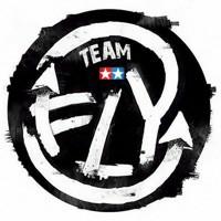 Team Fly