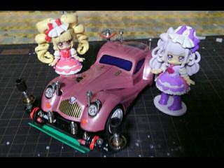 ピンクのロードガイル