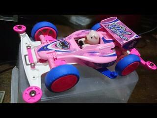 my lucky pig racer