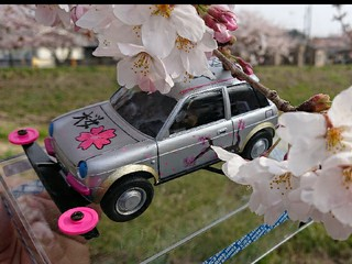 be-1 桜咲