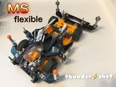 ms flexible