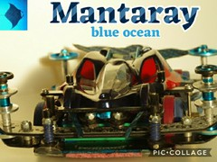 Mantaray blue ocean