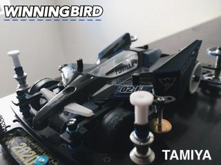 winningbird