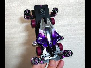MS-violet mirror bIird