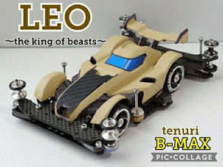 LEO~the king of beasts~