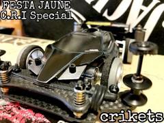 FESTA JAUNE   C.R.I Special